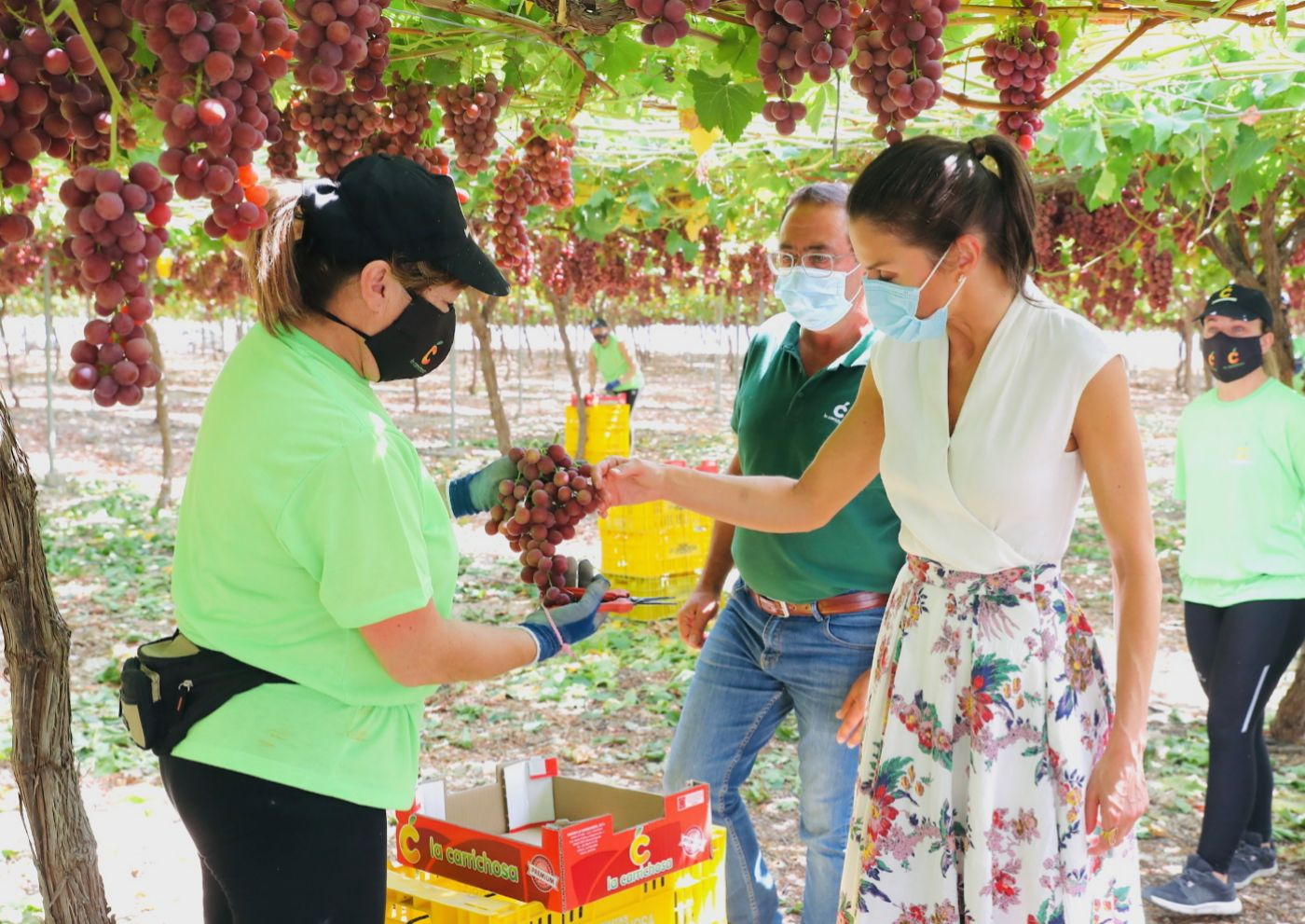 La reina charlando con María, recolectora de uva en <strong>Murcia</strong>.