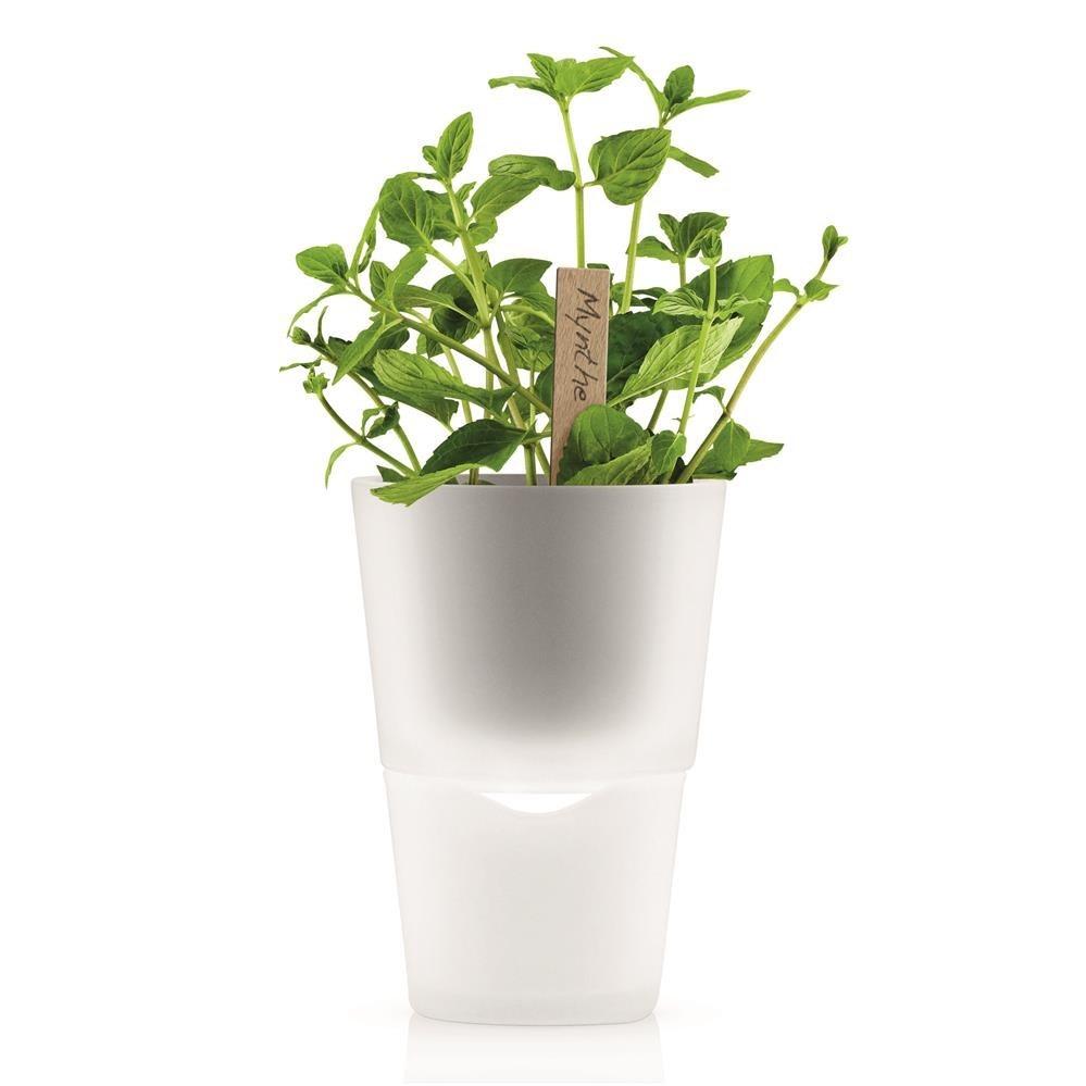 La maceta para hierbas con auto-riego Eva Solo es un opción...