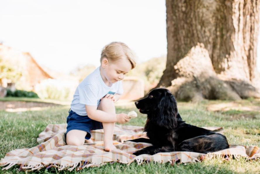 El príncipe George con Lupo