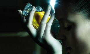 Dulces, cálidos, florales, frescos... aquí tienes los perfumes desde...