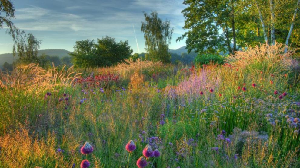Around Art organiza visitas a jardines secretos que no te puedes...