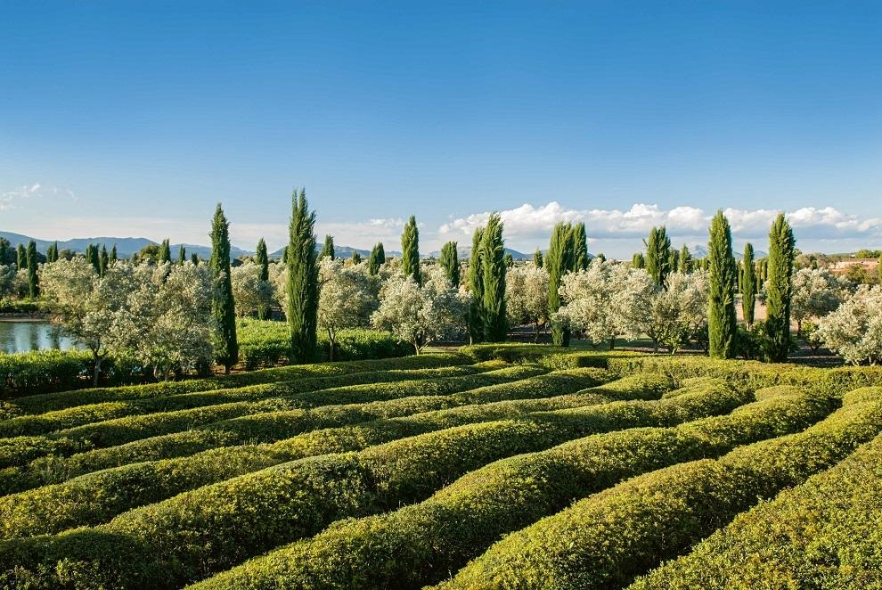 Jardín Cotoner
