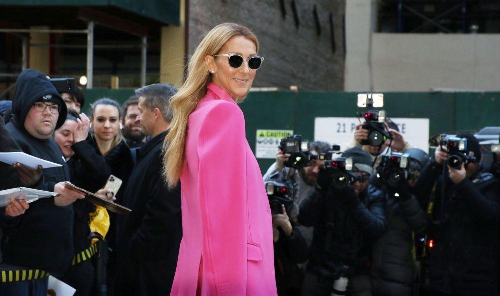 Céline Dion cuida muchísimo su melena y tanto en corto como en largo (con o sin extensiones) luce una melena espectacular y muy cuidada.