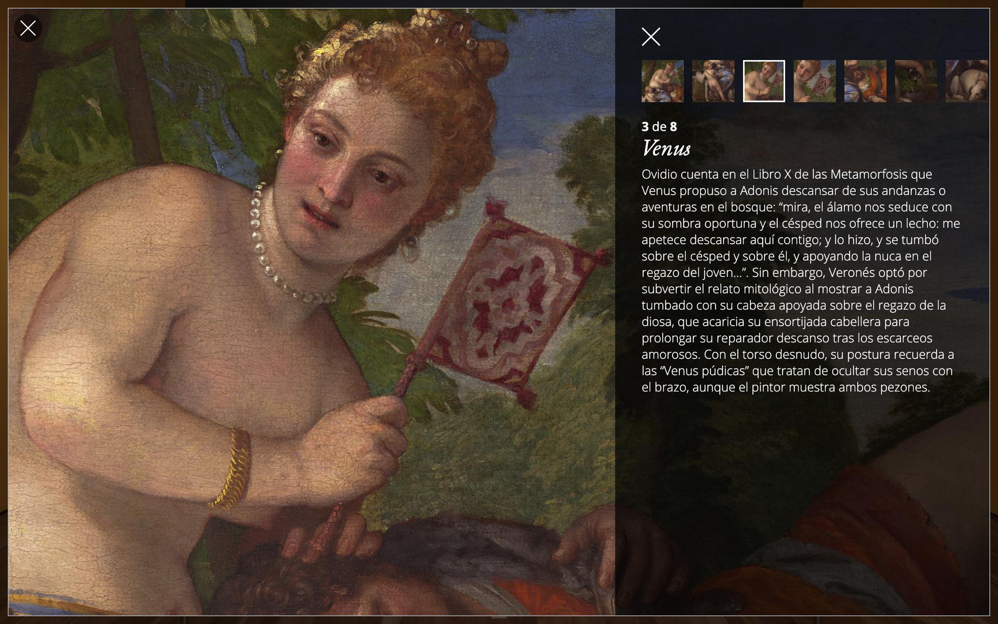 Imagen de la obra Venus y Adonis ya dentro del gigapixel donde se ve el storytelling
