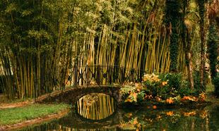Señorío de Bértiz, el jardín del Baztán