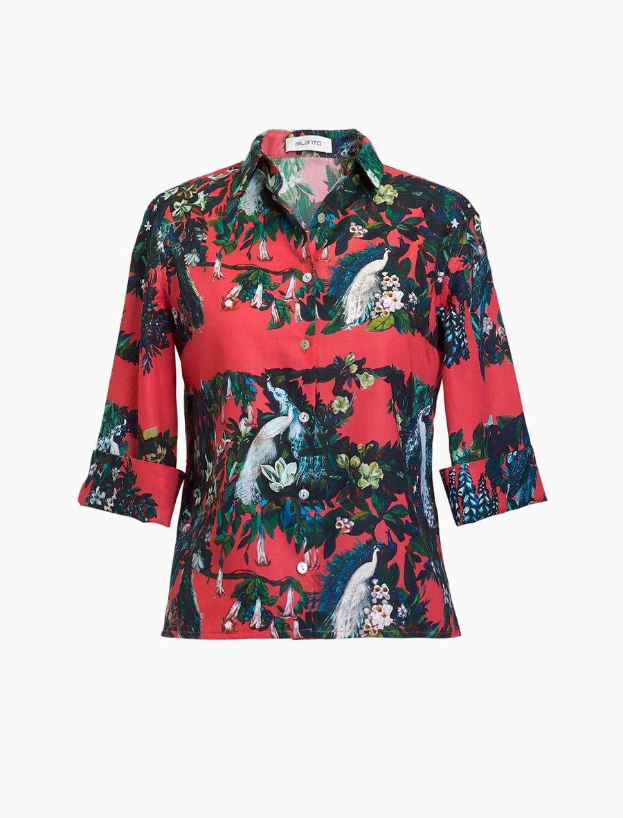 Camisa de Ailanto.