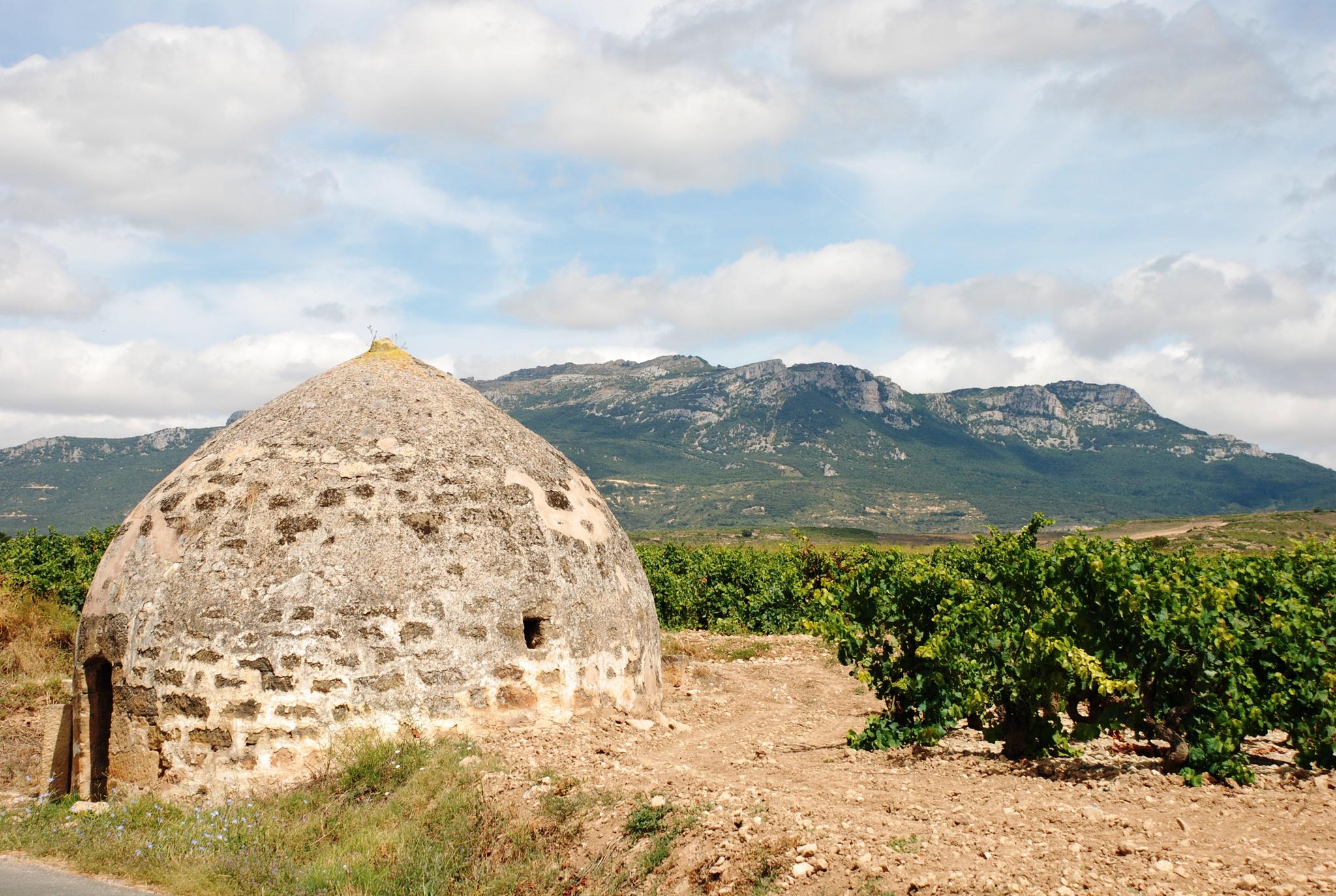 Ruta por los viñedos de Sonsierra, en La Rioja.