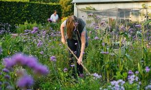 Según la psiquiatra Sue Stuart-Smith, un jardín es un refugio ideal...