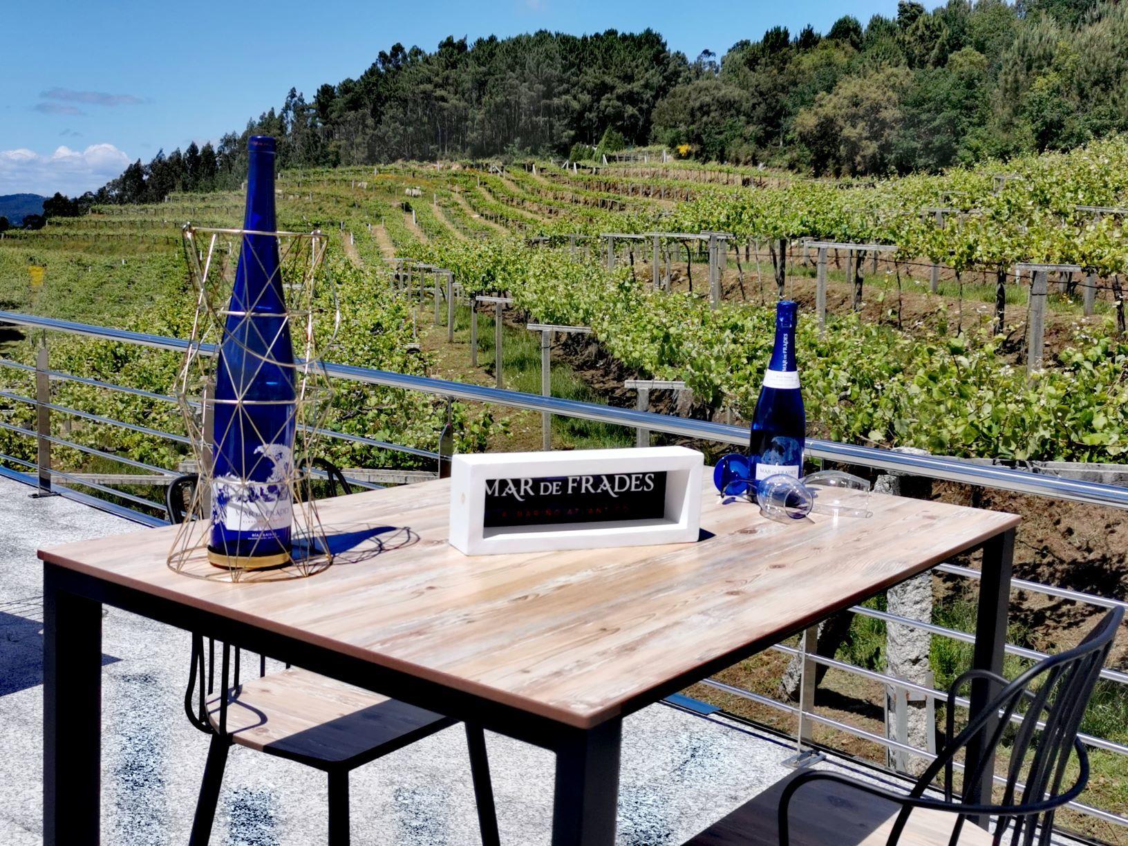 Cata de los vinos Mar de Frades en la terraza de la bodega, frente al viñedo.