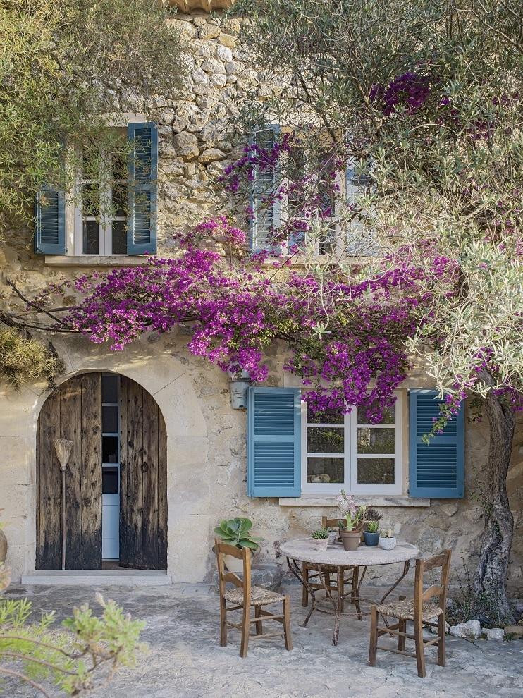 La puerta de entrada, con una espectacular buganvilla.