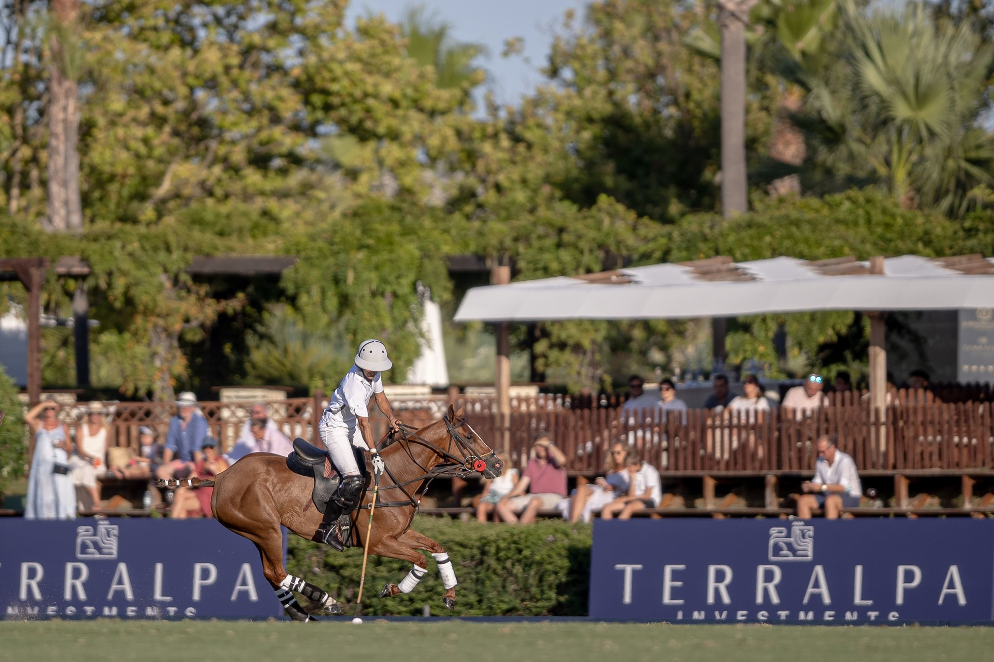 Copa de Plata Terralpa (50 Torneo Int. Polo Sotogrande)