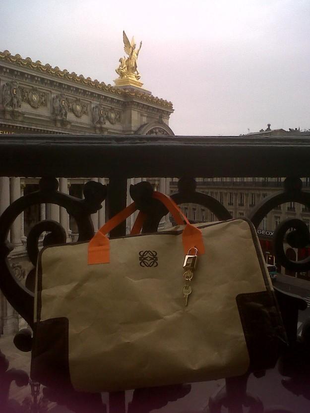 Mi Amazona de papel colgado en el balcón de mi habitaciÓn con la Ópera de Paris al fondo...