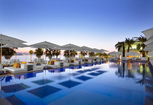 terraza con piscina y palmeras
