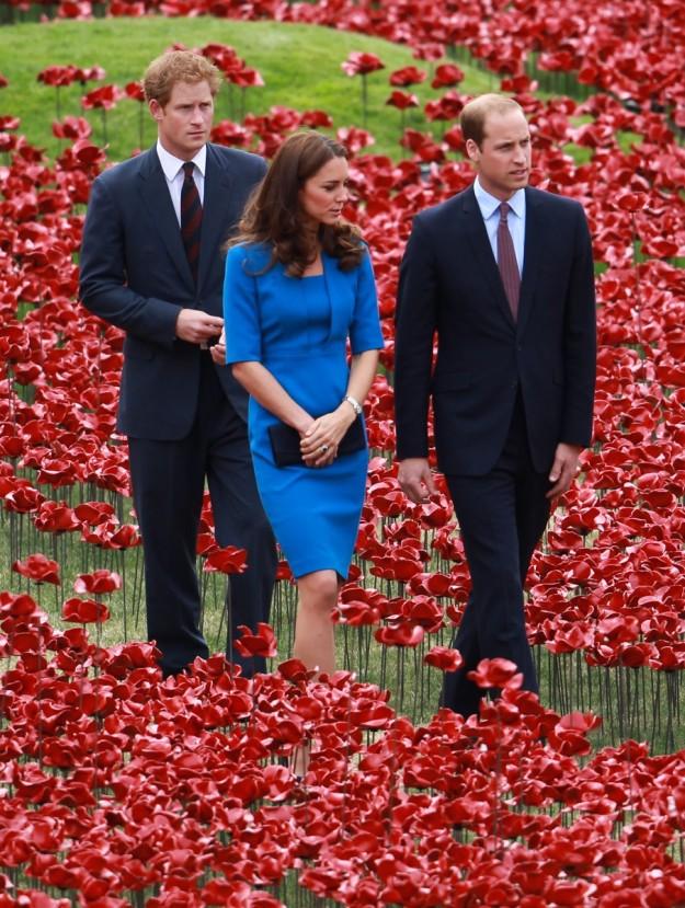 los Príncipes Harry y Guillermo y Kate Middleton.