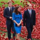Los Duques de Cambridge y el príncipe Harry ya tienen Twitter