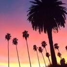 10 razones por las que Los Angeles está de moda