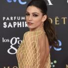 La alfombra roja de los Premios Goya 2015