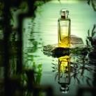 Así se crea un perfume: Le Jardin de Monsieur Li, de Hermès