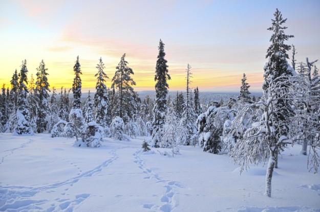 Atardecer en Rovaniemi.