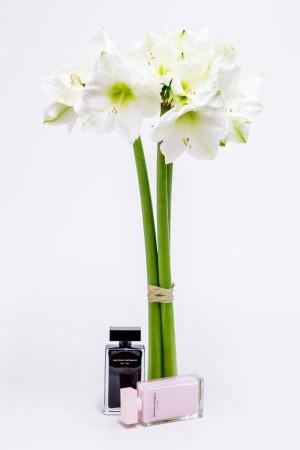 Demuestra tu estilo llevando con clase, como haces con tu perfume, tu ramo de novia.