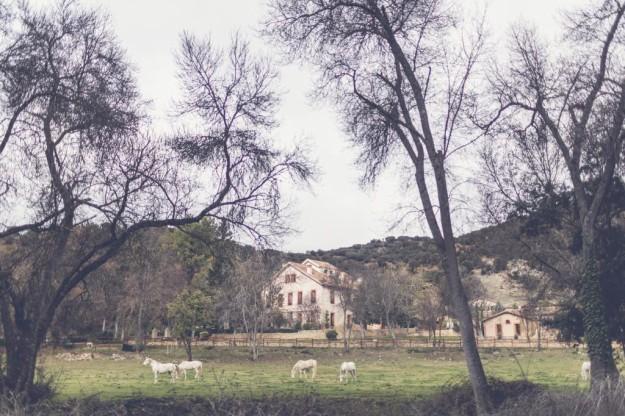 Finca La Cutamilla, Guadalajara.