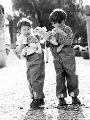 Despierta en los niños el amor por los animales.