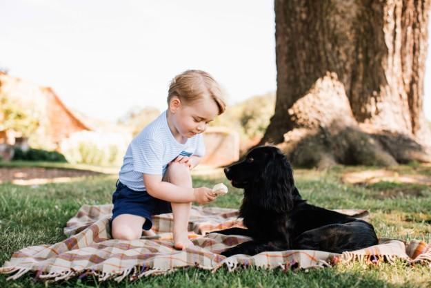 El príncipe George compartiendo su helado con la mascota de la familia