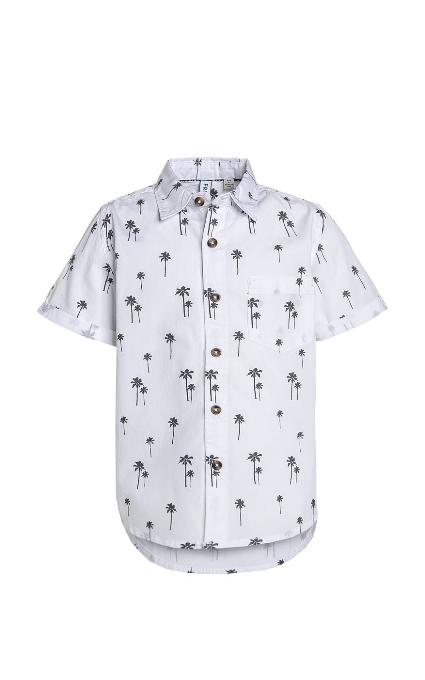 Camisa palmera