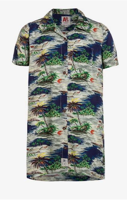 Camisa vestido salvaje